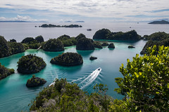 Pianemo (pleymalex) Tags: raja ampat pianemo viewpoint lookout islands asia archipelago mushroom blue
