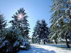 Blue Skies, Melting Snow