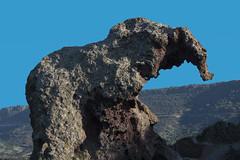 elephant (Paolo Dell'Angelo (JourneyToItaly)) Tags: rocciadellelefante localitàmulteddu castelsardosassari sardegna italia sardinia italy europe elephantrock