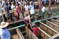 Fish Market P1250769 (Phil @ Delfryn Design) Tags: india2018 kerala