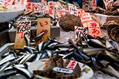 DSC_0057 (Adrian De Lisle) Tags: asia clams fish kyoto nishikimarket seafood shellfish kyōtoshi kyōtofu japan jp