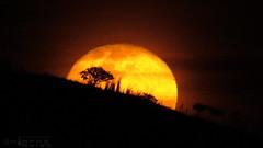 Luna - Moon 01Feb2018-1 (N3T0V) Tags: lunamenguante moon luna waningcrescent waningmoon nubes dark sky night noche chiapas cielo méxico astronomia astrofoto astronomy talkingtothemoon astrophoto chiapasmeteo canon canonmexicana landscape panorama nature awesome cloud frebrero frebrero2018