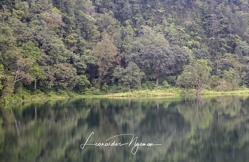 Ranamese Lake - Flores island