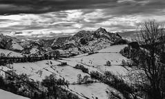 6/52 Oscuridad. Las Montañas de Mordor (Lufersa007) Tags: bn asturias landscape sky clouds nubes tree nieve snow dark oscuridad