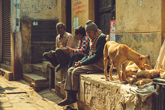 Life on roadside in Varanasi (Geng_marigold) Tags: old varanasi india travel journey human people man life light morning style street road dogs corner vibe photography