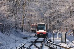 Ein DT4 erreicht das verschneite Ahrensburg West (Lilongwe2007) Tags: ahrensburg west deutschland schleswig holstein schnee winter eis sonne züge eisenbahn hochbahn ubahn technik fahrzeuge