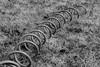 lost corkscrew in the grass (Pejasar) Tags: corkscrew shape geometric pattern blackandwhite bw tulsa oklahoma diagonal texture