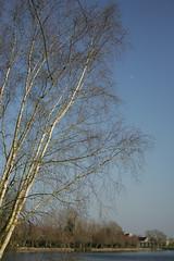 Normandie (fabhuleux) Tags: étangs moon lune nature 35350mm 1d canon normandie france