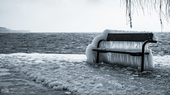 Banc de glace (Philippe Bélaz) Tags: nb bancs embruns froid gelé glaces glacial hiver lacs noirblanc paysages