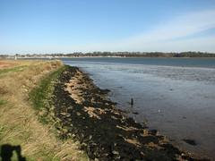 The River Owell near Shotley (JonCombe) Tags: coastwalk193 suffolk stourandorwellwalk coast coastwalk orwell