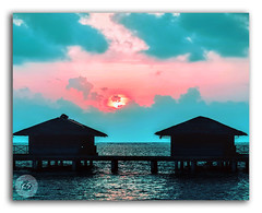 Traveling...it leaves you speechless...then turns you into a storyteller! (FotographyKS!) Tags: ibnbattuta maldives male seaplane huts resort holiday vacation woodden islandresort water sea reflection indianocean sunset sunrise sun clouds splittoning nature travel travelforlife totravelistolive nikondigital floating longbeach tropical destination honeymoon coral exotic ocean asia bay indian lagoon landscape palm reef relax romantic tourism background kreative perspective beach beauty planet artofclouds photoshop artistic reflectionslovers