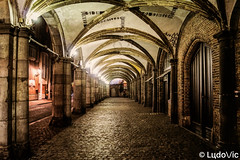 A night in Bruges (14) (Lцdо\/іс) Tags: brugge bruges belgique belgium belgie night nightcity venice venise venizia north voyage city citytrip lцdоіс travel trip must see mustsee awesome street lights romantic tunnel love loving valentin
