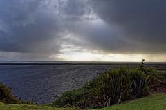 _DS01213_DxO-2 (schambach.robert) Tags: nature sea cloudsky sky landscape coastline beach scenics summer outdoors cloudscape blue water nopeople beautyinnature grass sunset horizon sand overcast everypixel