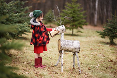 New pet (Elizabeth Sallee Bauer) Tags: christmas nature child childhood decorating decoration evergreen festive girl holiday kid outdoors outside pine plaid playing red reindeer seasonal tradition youth