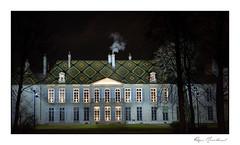La cheminée qui fume (Rémi Marchand) Tags: dijon hôteldelathoison canon5dmarkiii nuit bourgogne hôtelparticulier tuilesvernissées côtedor