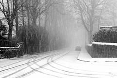 Fresh tracks into the gloom (HonleyA) Tags: fujifilm fujinon fuji weather tracks snow winter