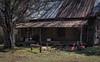 A Pop of Color (TuthFaree) Tags: abandoned house tinroof bench hbm benchmonday rural ga georgia grayga porch horseshoe flamingo pink fake