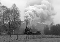 4277 - Basford curve (Andrew Edkins) Tags: basford exhaust 4277 greatwestern gwr churnetvalleyrailway railwayphotography staffordshire england uksteam freighttrain goodstrain preservedrailway 30742charter travel trip light geotagged canon 42xxclass trees