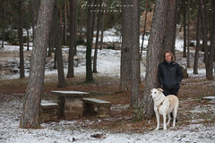 IMG_7681.jpg (Aildrien) Tags: lena jaca chenia mountains outdoor snow pirineos trees 50mm arboles pet pyrenees parador dog oroel aragon nevada trekking nieve mountain