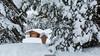 Chalet (Nicola Pezzoli) Tags: dolomiti dolomites unesco val gardena winter snow alto adige italy bolzano mountain nature december piz sella chalet heavy wood forest cloudy