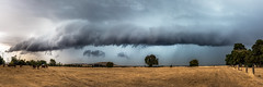 Summer Storm (Mark McLeod 80) Tags: australia kingstonvic markmcleod markmcleodphotography summer dry farm paddock rural storm