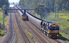 TT130 TT03 and 9312 cross the Aurizon coal on the approach to Metford on MR967 (bukk05) Tags: tt130 railpage:class=102 railpage:loco=tt130 rpaunswttclass rpaunswttclasstt130 tt03 9312 ttclass 93class wagons explore export engine emd electromotivediesel gt46cace emd16710g3ces railway railroad railpage rp3 rail railwaystation railwaystations train tracks tamron tamron16300 trains photograph photo pn pacificnational pncoal loco locomotive horsepower hp ge ge7fdl16 flickr freight diesel station standardgauge sg spring signal australia artc zoom canon60d canon coal coaltrain c44aci nsw newsouthwales newcastle cityofnewcastle 2017 huntervalley hunter