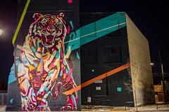 Arlin (piecesofdetroit) Tags: detroitgraffiti detroit graffiti street art streetart graffitiart graffitiwriters motorcity piecesofdetroit germanfriday friday killthematador thegermanfriday leicacl arlin arlingraff muralsinthemarket