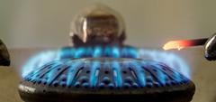 20180124_2602_7D2-75 Blue Flame #2 (024/365) (johnstewartnz) Tags: canon canonapsc apsc eos 7d2 7dmarkii 7d canon7dmarkii canoneos7dmkii canoneos7dmarkii 70200mm 70200 70200f28 flame blueflame gas gascooker macro macromonday macromondays 7dwf 024365 day024 day24 onephotoaday oneaday onephotoaday2018 365project project365 mm99