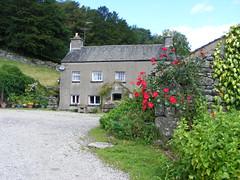 Wild Roses, Rusmickle Farm, Lyth Valley, Cumbria (Diepflingerbahn) Tags: rusmickle lythvalley damsons southlakeland cumbria fujifilm fujifilmfinepixs5800s800 roses red wildroses rockwall stonewall slateroof