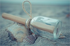 Life is a little like a message in a bottle, to be carried by the winds and the tides (Peter Jaspers (sorry less time to comment)) Tags: frompeterj© 2018 olympus zuiko omd em10 1240mm28 macro macromondays inabottle bottle shell beach zoutelande zeeland message seaside seashore noordzee northsea vintage sand