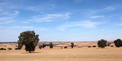 Zamora Countryside _3321 (hkoons) Tags: western europe campillo castile castileleon european iberia leon mediterranean spain