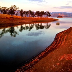 golden berryessa (sculptorli) Tags: berryessa dusk sunset napa california reflection water tree lake