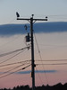 Sir Snowy and Utility Pole Silhouette (ParkerRiverKid) Tags: snowyowl ryenewhampshire sunset white bird ansh85 scavenger7 silhouette