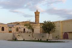 Vue sur le minaret Kalon, Boukhara (Histoires de tongs) Tags: uzbekistan ouzbékistan tourdumonde travel trip roundtheworld adventure aventure voyage architecture découverte discover visite visit