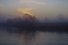 in the flow (Sundornvic) Tags: trees mist river severn banks riverbank riverside sunrise morning light clouds sky reflection silhouette shropshire