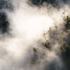 (monsieur ours) Tags: vietnam nature fog brume forêt forest montain montagne landscape paysage carré square thacbac