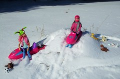 Winter Fun w/ friends (flores272) Tags: skipper skipperdoll barbie barbiedoll barbiefairy madetomovebarbie madetomove toydog snowskijet snowmobile snow winter toy toys dolll dolls