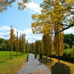 Autumn Street thumbnail