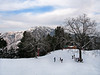 GREEN SPOT -- Winter View ! (Mansoor Goheer) Tags: green spot winter ski nathiagali kalabagh pakistan mansoor goheer colour beautiful image view picture photo lovely place clouds slope blue walnut nathia gali hill station khyber pakhtunkhwa