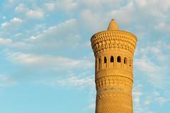 Le minaret Kalon de Boukhara (Histoires de tongs) Tags: uzbekistan ouzbékistan tourdumonde travel trip roundtheworld adventure aventure voyage architecture découverte discover visite visit
