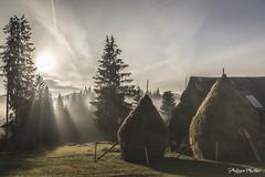 scarisoara J-7 apuseni-1458 (Philippe Murtas Watch my albums) Tags: cabane brume brouillard fog house roumanie pelouse bois hut romania scarisoara chimney lawn wood paysage landscape