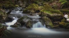 _ATP3663 (anahí tomillo) Tags: nikon nikond7500 naturaleza nature agua water rio river lightroom