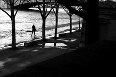 On the banks of the Seine (pascalcolin1) Tags: paris seine femme woman fleuve rivière river arbres trees lumière light ombre shadows eau water photoderue streetview urbanarte noiretblanc blackandwithe photopascalcolin canon50mm 50mm canon