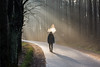 The Cloud Maker (modestmoze) Tags: brother walking man road green grass nature sunshine beams 2017 500px winter december light sun trees forest naturephotograph naturelove beautiful view shadows cloud smoking travel explore outside outdoors one alone branches amazing interesting