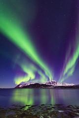 Kvalnes aurora (Lukasz Lukomski) Tags: aurora norway norwegia norge northernlights lofoten lofoty landscape krajobraz longexposure nikond7200 sigma1020 lukaszlukomski archipelago wybrzeże wyspa island coast wybrzeze costa rocks skały skandynawia scandinavia mountains góry