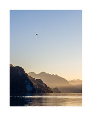 Thunersee (analog surfing) Tags: outdoor lake paraglider glider mountains hills nature sun set color digital landscape travel