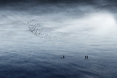 through emptiness (Dyrk.Wyst) Tags: blue plain silhouettes sky water minimal birds imagination lost textures abstract illustration landscape emptiness