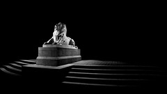 War memorial, Aberdeen BW.jpg (___INFINITY___) Tags: 2018 6d aberdeen bw godoxad360 toourgloriousdead architect architecture art building canon canon1740f4 cowdrayhall darrenwright dazza1040 eos flash granite infinity light lightpainting lion magiclantern night scotland sculpture statue stone strobist uk warmemorial wideangle artinbw