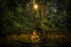 Buddha Thailand (♥siebe ©) Tags: 2018 buddhism chiangmai siebebaardafotografie thai thailand wat temple wwwsiebebaardafotografienl ประเทศไทย วัด เชียงใหม่ เมืองไทย ไทย nederland