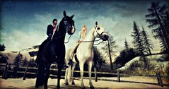 Riding with you @ Lakeside ♥ (Kayleigh Lavender*) Tags: horse cheval ride riding nature